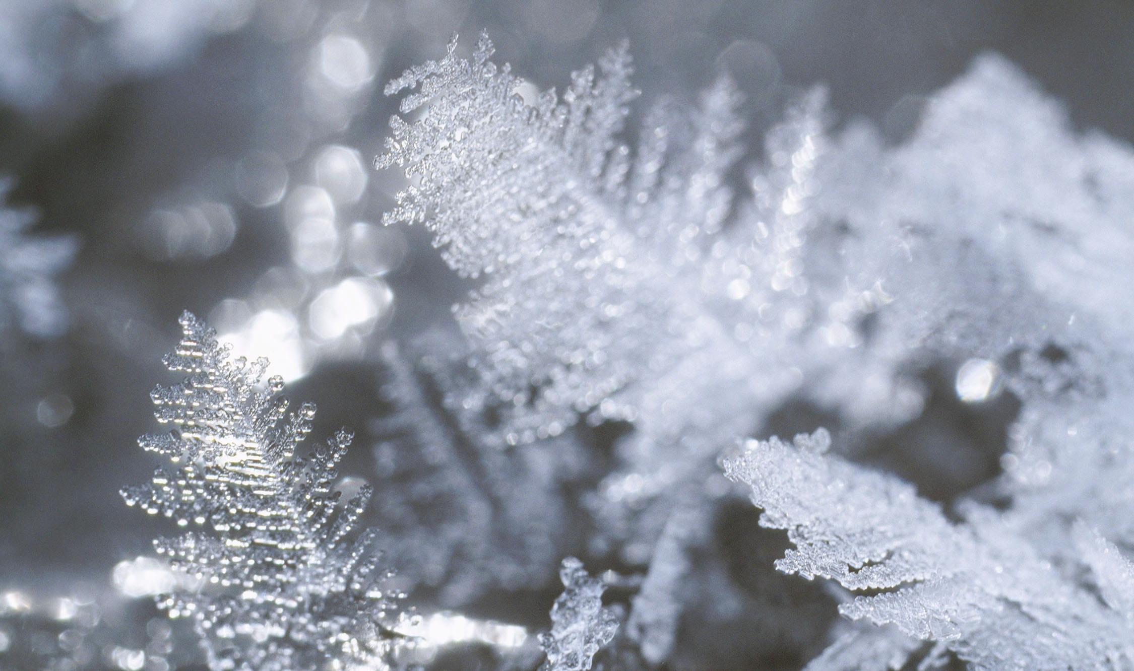 きれいで不思議な冬のできごと