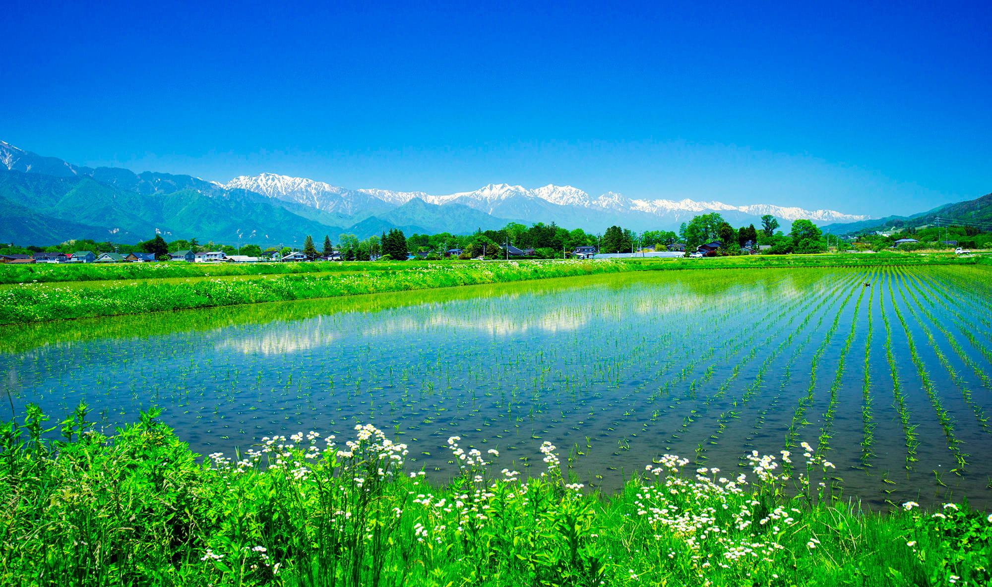 春を告げる風景「雪形」