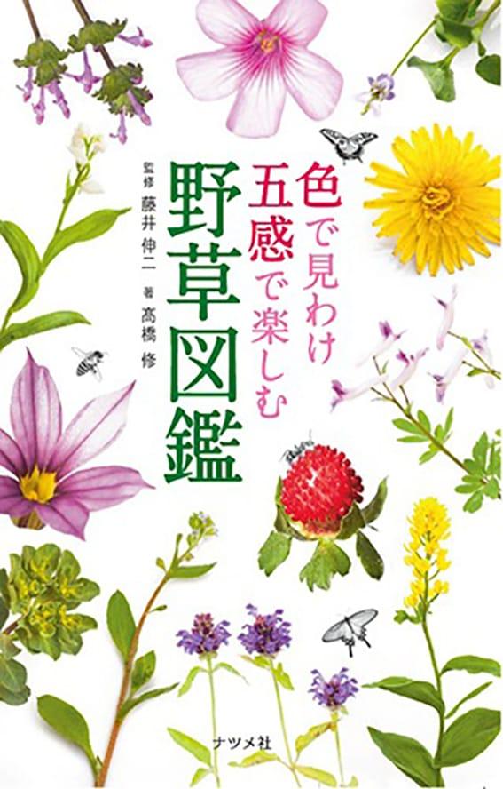 色で見わけ 五感で楽しむ野草図鑑