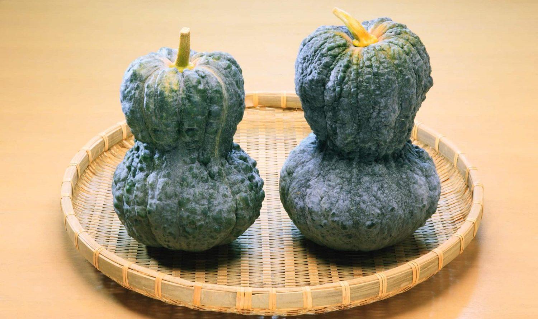 伝統野菜から考えるシードバンクの可能性