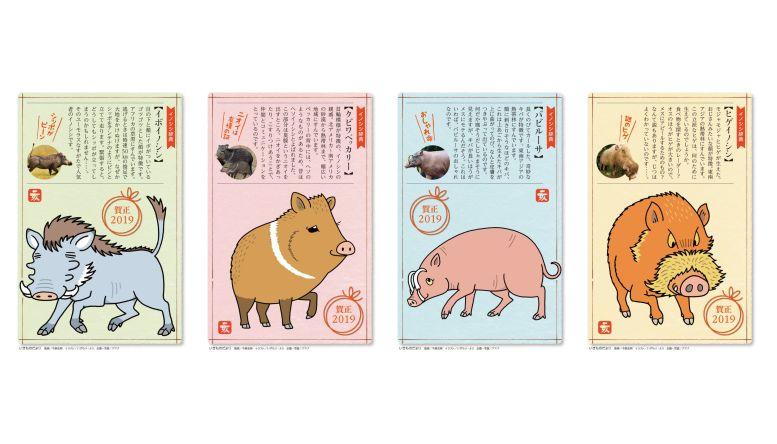ネイチャー&サイエンスが手掛けた仕事|日本郵便 『いきものだより年賀状』