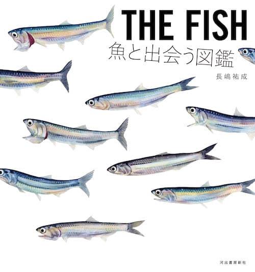 ネイチャー&サイエンスが手掛けた仕事|河出書房新社『THE FISH 魚と出会う図鑑』